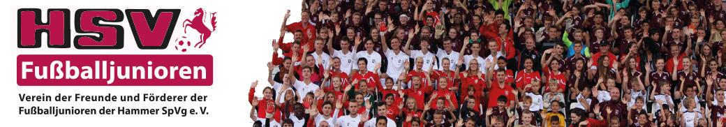Verein der Freunde und Förderer der Fußballjunioren